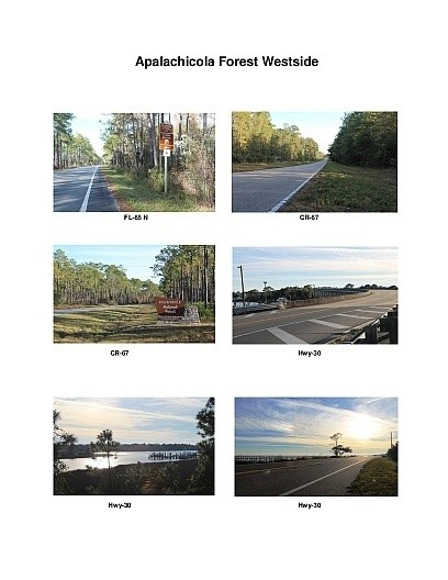 Apalachicola Forest Westside Scenic Motorcycle Ride