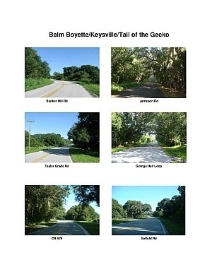 Balm Boyette/Keysville/Tail of the Gecko Scenic Motorcycle Ride