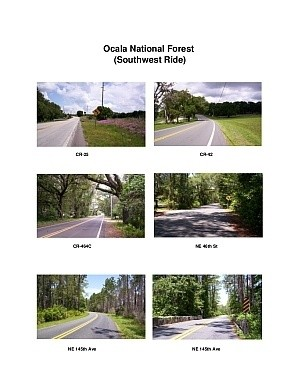 Ocala Forest Southwest Scenic Motorcycle Ride