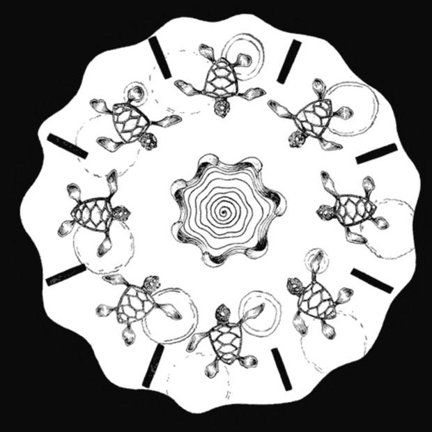 Tortuga - Fenaquistoscopio