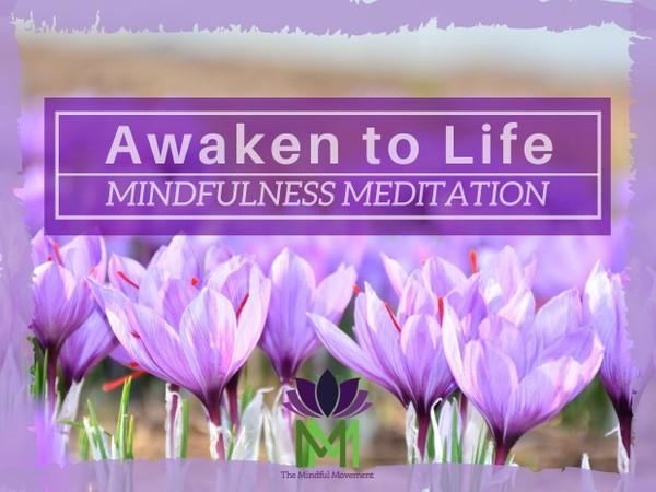 Awakening Fully to Life by Embracing Emotions / Mindfulness Meditation