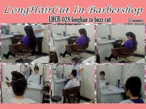 LHCB-028