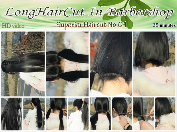 Superior Haircut No.01