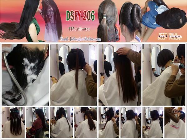 DSFY-206