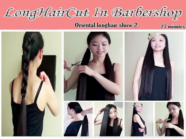 Oriental longhair show 2