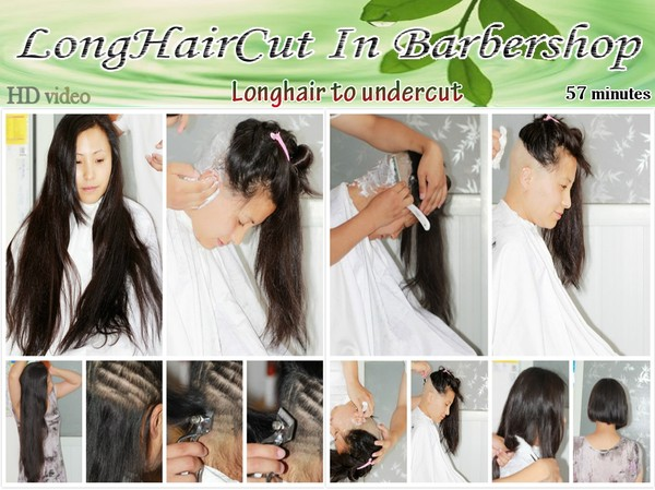 Longhair to undercut