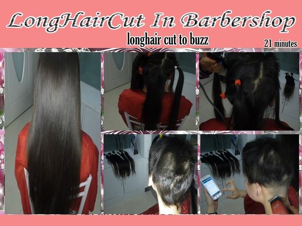 longhair cut to buzz