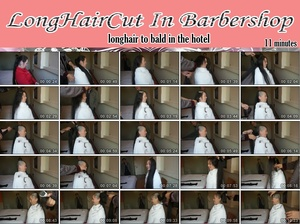 Longhair bald in the hotel