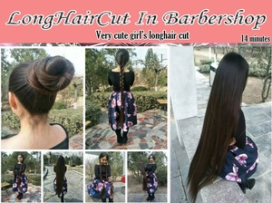very cute girl's longhair cut