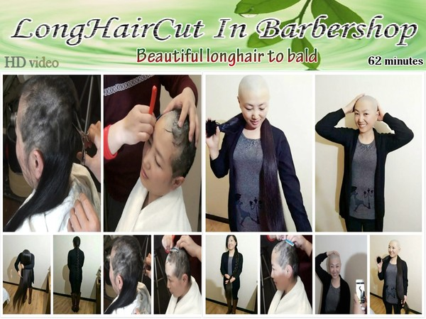Beautiful longhair to bald