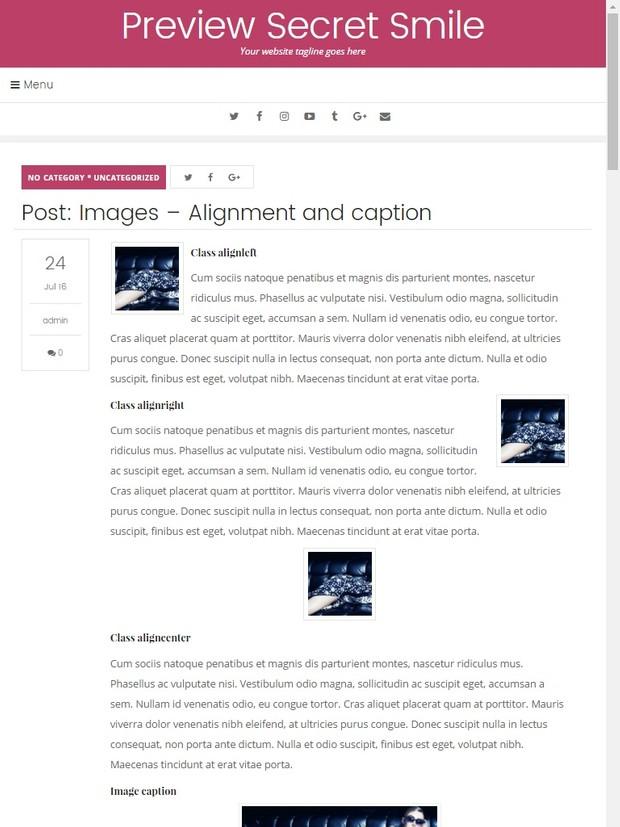 WordPress Theme #02 (Responsive)