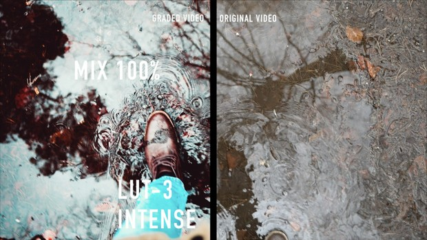 8 LUTS with Bonus LUTS for Creative minds & Wedding