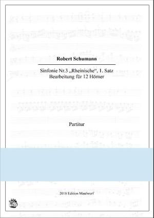 Schumann Rheinische Sinfonie 1.Satz