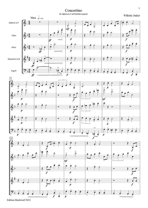 Concertino für Alphorn (Holzbläser)