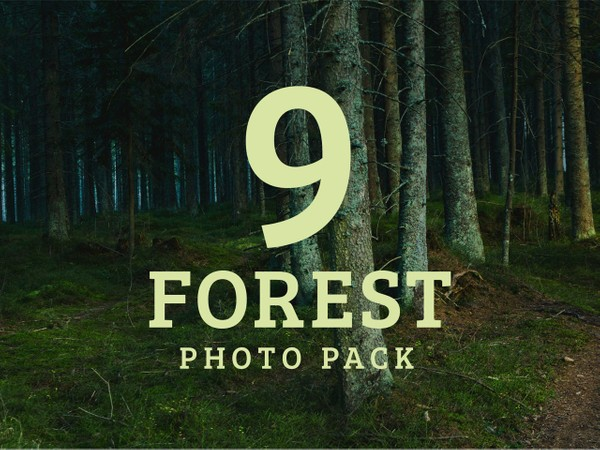 Forest Photo Pack