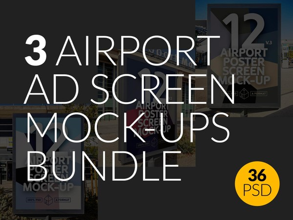 3 Airport Ad Screen Mock-Ups Bundle 2