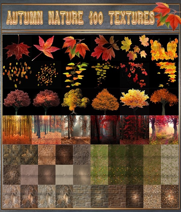 Autumn Nature 100 Mixed Seamless Textures