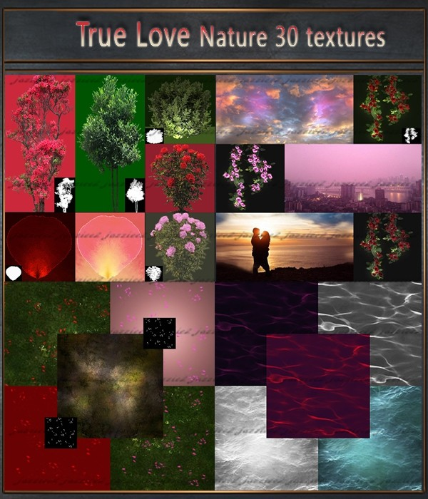True Love Nature 30 Pack