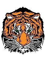 Tiger's Head (color blocks)