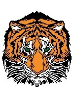 Tiger's Head (written)