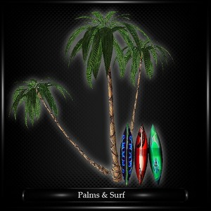 PALMS AND SURF