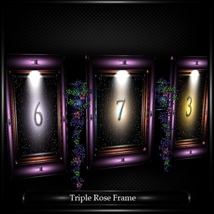 TRIPLE ROSE FRAME