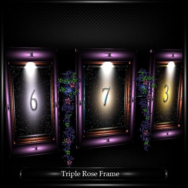 TRIPLE ROSE FRAME