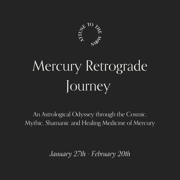 Mercury Rx in Aquarius Journey ~ January 27th through February 20th