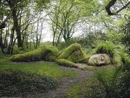 Grounding into Your Earned Wisdom ~ Nidra w/ Jana Roemer