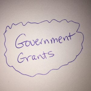 Government Grants and Assistance