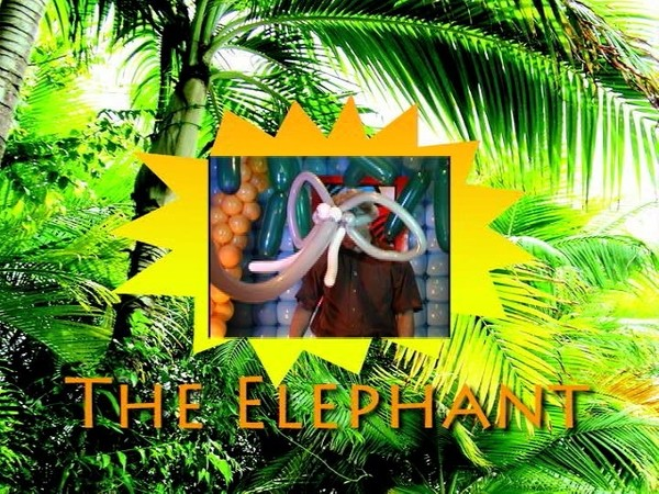 """Elephant Hat"" Balloon Design by Jimmy Leo"