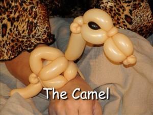 Camel Balloon Animal Bracelet by Vicky Kimble