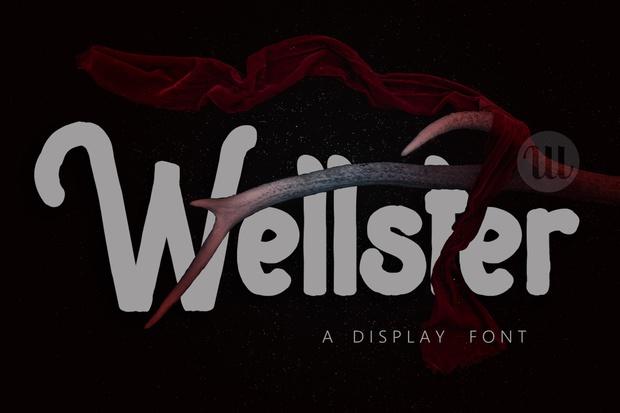 Wellster