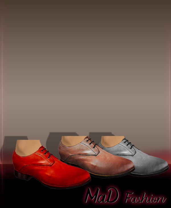 Male shoes 05