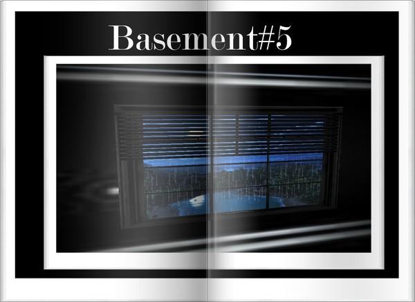 Basement#5