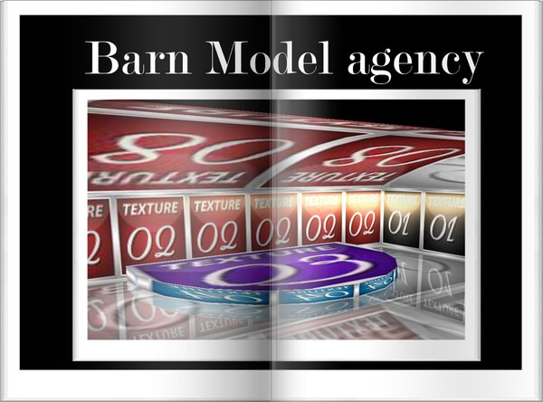 Barn Model  Agency