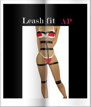 Dog Leash Fit AP