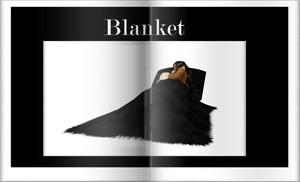 Blanket Furniture