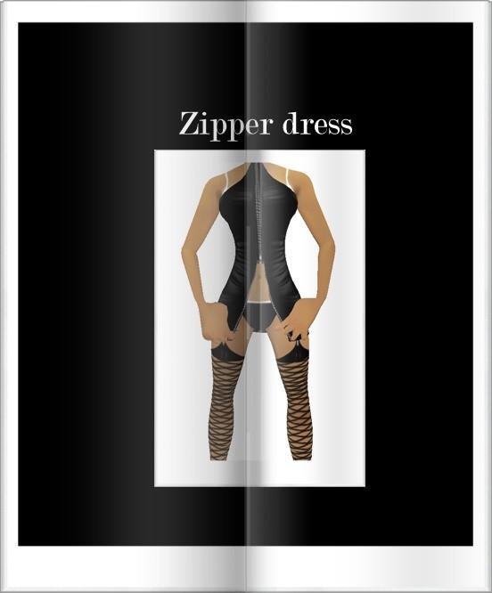 Ga Zipper Dress