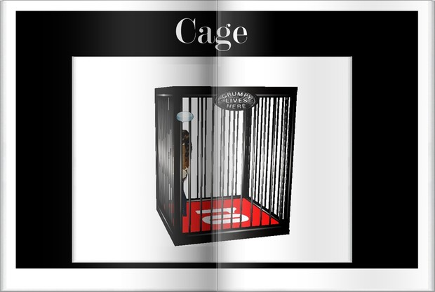 cage For Clumsy