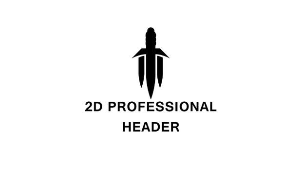 2D Professional Header