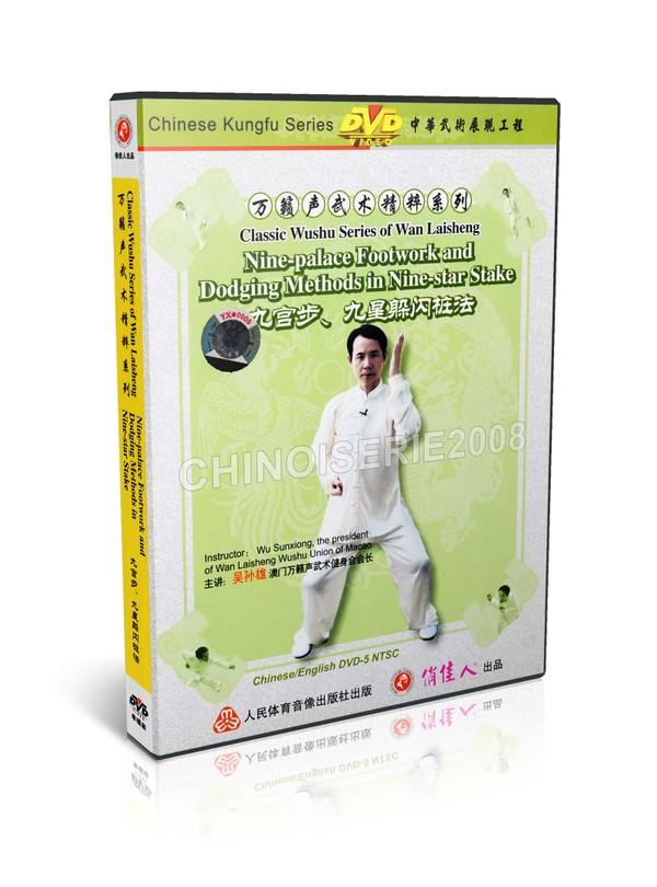 DW121-08 Wan Laisheng Wushu 9 Palace Footwork & Dodging Methods in 9 Star Stake MP4