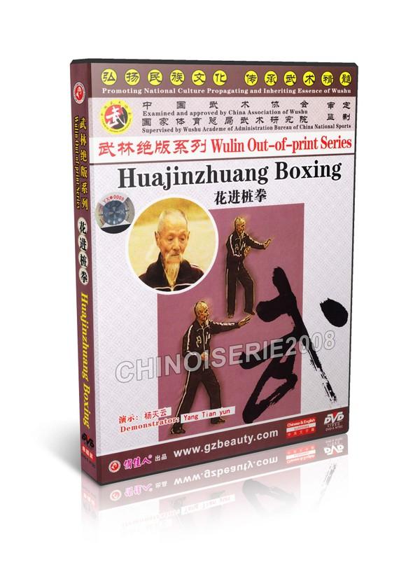 DW146-12 Martial art Wulin Out-of-print Series - Huajinzhuang Boxing by Yang Tianyun MP4