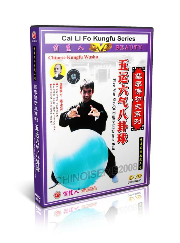 DW050 Traditional Wushu CaiLiFo Five-Yun six-Qi Eight-Trigrams Ball by Chen Yongfa MP4