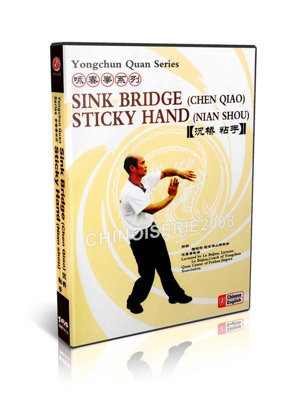 DW111-03 Wing Chun Kungfu Yong Chun Quan Series Sticky Hand (Nian shou) by Lu Baijun MP4