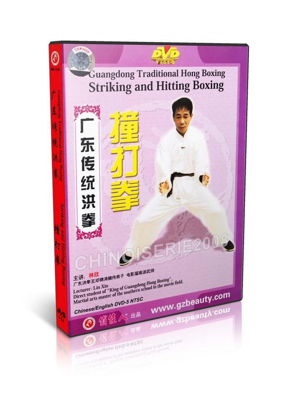 DW128-03 Chinese Kungfu Traditional Hong Boxing Striking and Hitting Boxing - Lin Xin MP4