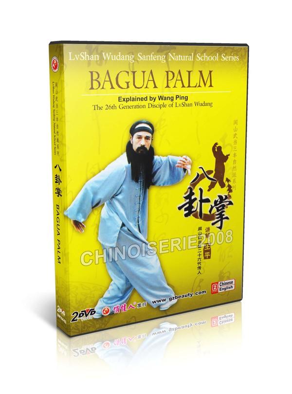 DW164-02 Chinese Traditional Kungfu Lvshan Wudang Bagua Palm Part I,II by Wang Ping MP4