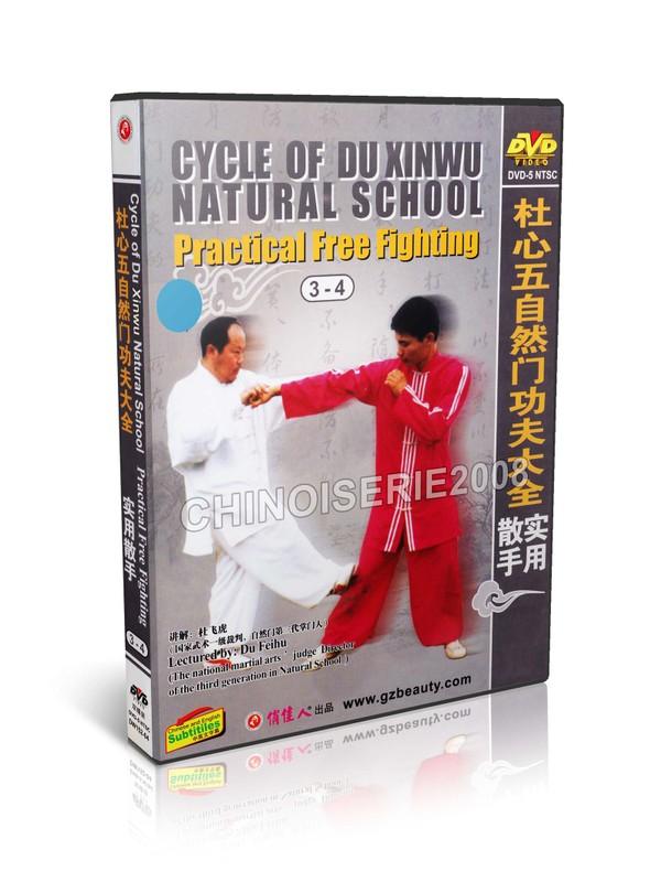 DW152-03-04 Cycle of Du Xinwu Natural School - Practical Free Fighting(1-4) - Du Feihu MP4
