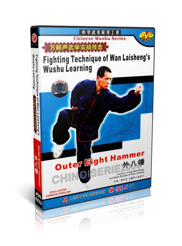 DW115-04 Wan Laisheng's Wushu Kungfu Outer Eight Hammer Techniques by Liang Shouzhong MP4