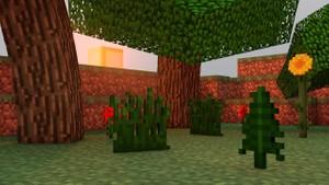 Minecraft Map.
